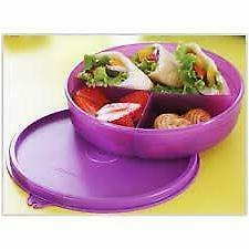 tupperware plastic kids divided dish lunch box