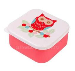 Sass & Belle Owl On Branch Square Plastic Lunch Box for Sand