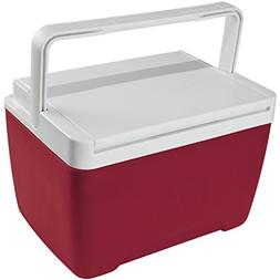 Personal Cooler Food Ice Chest Lunch Box 9 Quart Small Picni